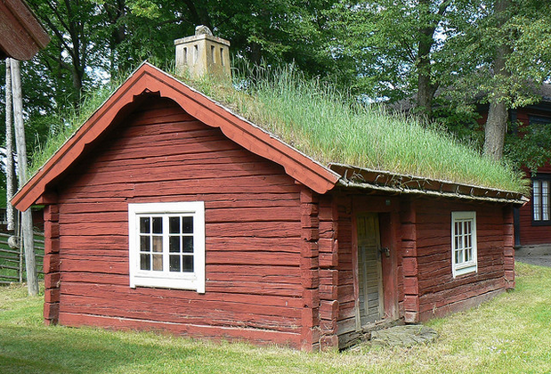 The Amazing Living Roof. You Won't Believe This