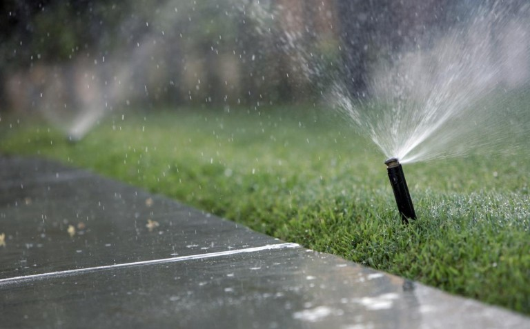 11 Easy Changes You Can Make to Save Water