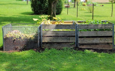 These Small Changes Will Make Your Garden Far More Eco-Friendly