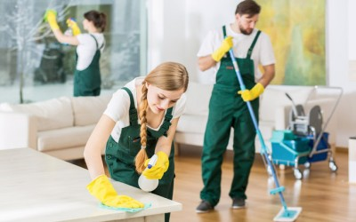Clean and Green! Eco-friendly Cleaning Products for Your Home and Business