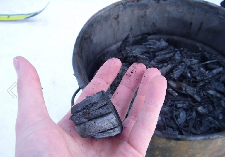 How Biochar Contributes to Improved Crop Growing and Yields