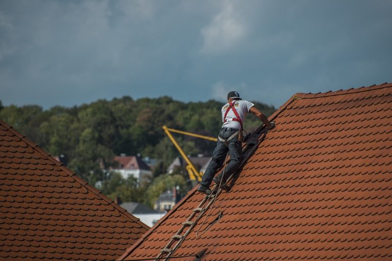 Why Your Roof Needs Regular Checks