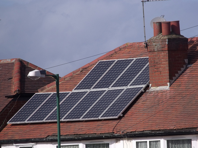 Essential Guide to Maintaining your Green Home, and Health