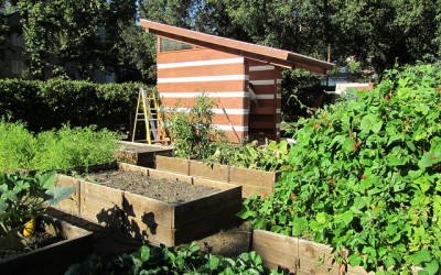 Add Value To Your Home: Tidy Up The Garden