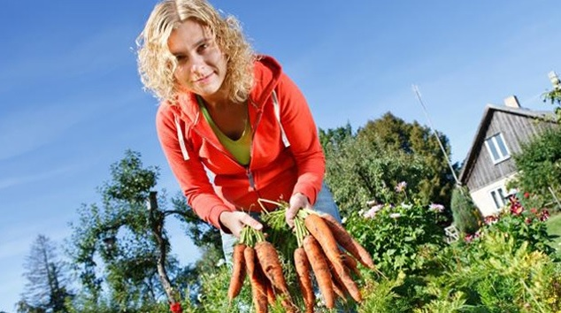Home Gardening to Save Money
