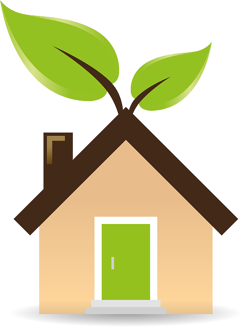 5 Eco-Friendly Home Building Methods