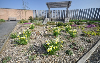 What Makes The Best Eco Garden?