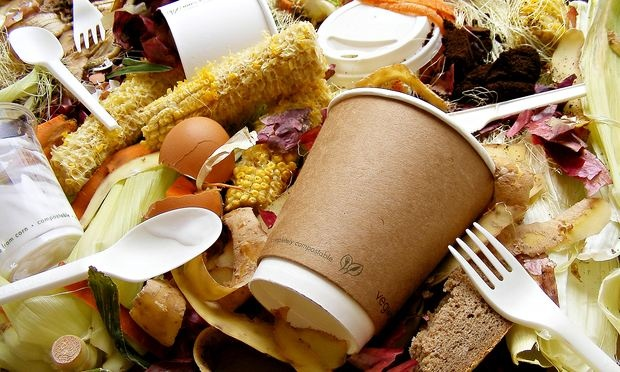 Why every home should consider food waste recycling