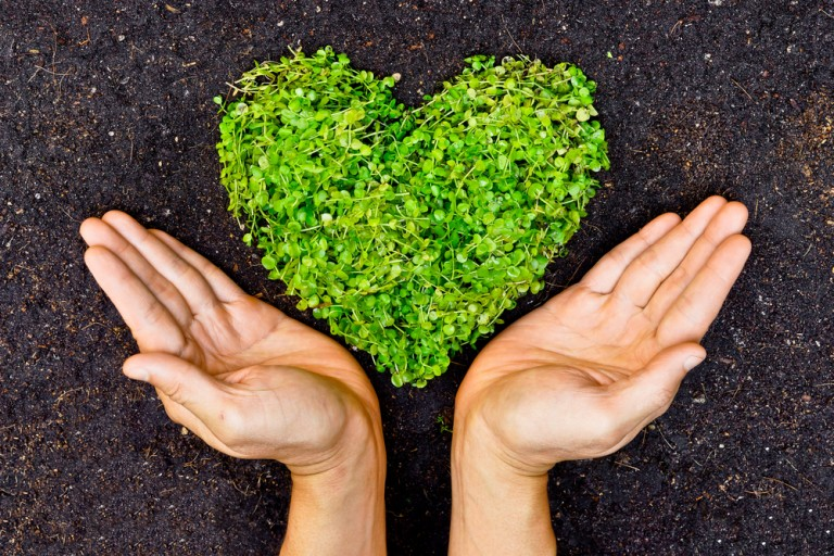 Making Your Home Business Greener