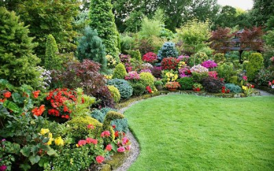 Tips for Choosing and Collaborating with a Landscape Gardener