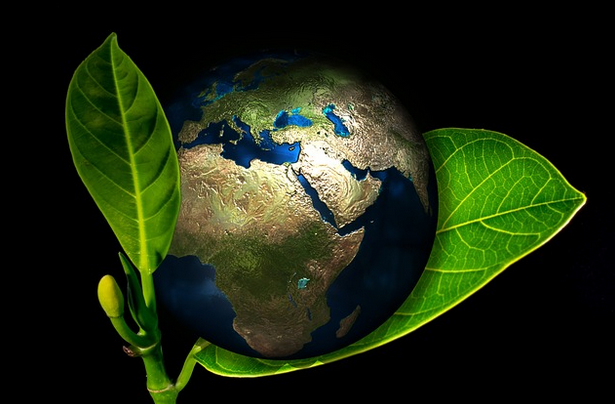 Fantastic Tips To Make Your Home Eco-Friendly