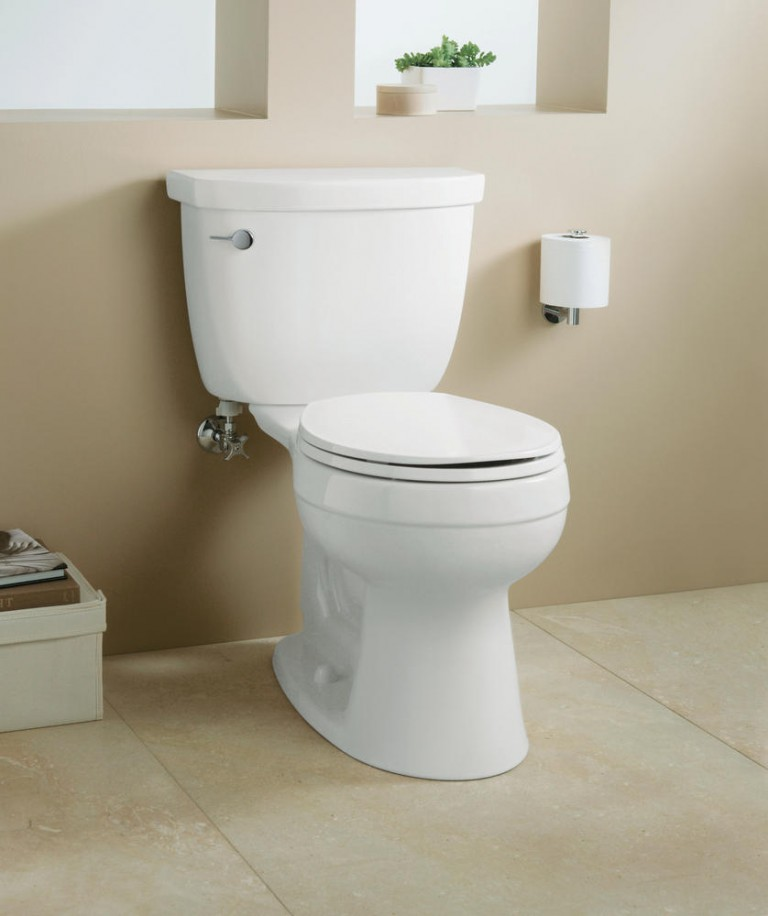 When Should You Buy a New Toilet?