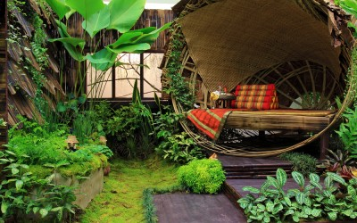 Where to Find Tips on Creating an Eco-Friendly Home