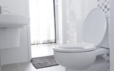 7 Benefits of Using Low-Flow Toilets in Your Bathroom
