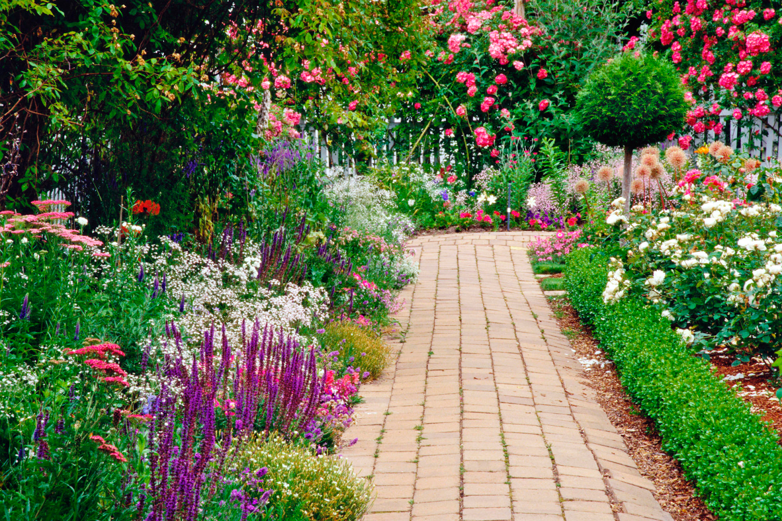 Five tips for designing a garden
