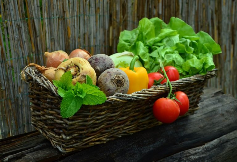 Help the Environment: Grow Your Own Vegetables