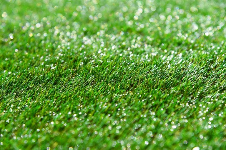 Artificial Grass Doesn't Look Fake, Even In A Drought