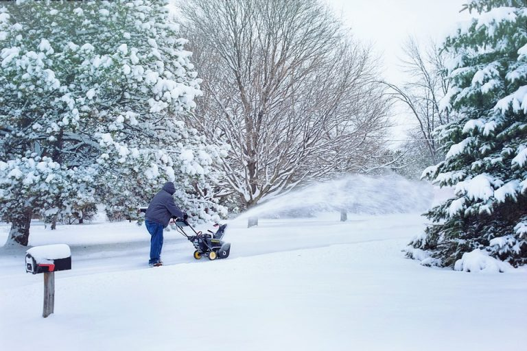 Are Electric Snow Blowers Actually Any Good?