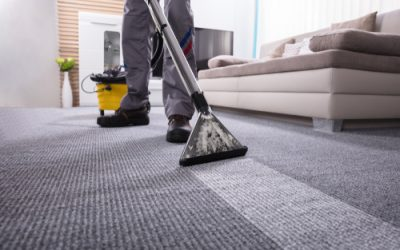 Signs Your Carpet Needs to be Cleaned by Professionals