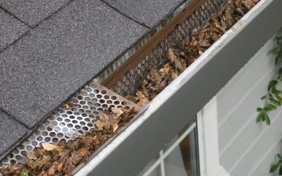 Why You Should Never Neglect Your Gutters