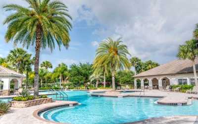 Daily Pool Maintenance Tips